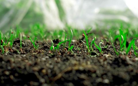 農地転用規制の一部緩和~農工法改正、地域未来投資促進法成立について~
