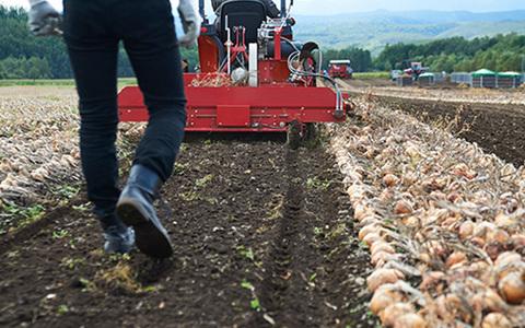 農地法3条の解説 - 農地の売買・賃貸借(前編)