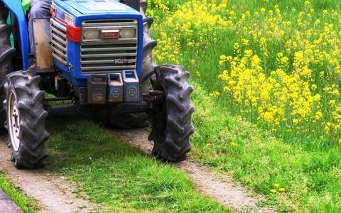 農地転用とは - 関連法・手続きまとめ